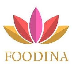 Einflussreiche Koch Blogs Award 2019 foodina.eu