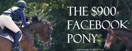 the900facebookpony